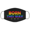 Born This Way LGBTQ Gift Face Mask