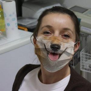 Shiba Inu Japanese Doge For Dog Lovers Face Mask