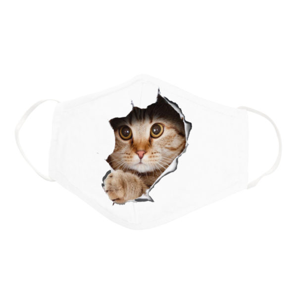Funny Cute Cat Waiting Behind Mouse Hole Wall Face Mask
