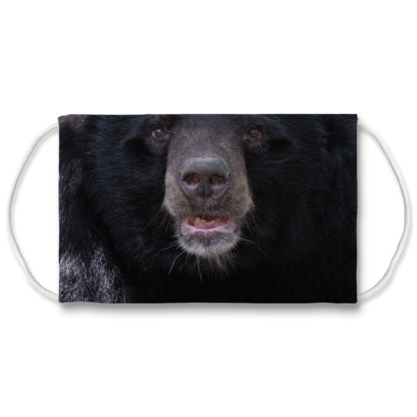 Black Bear Grizzly Bear Wild Face Mask