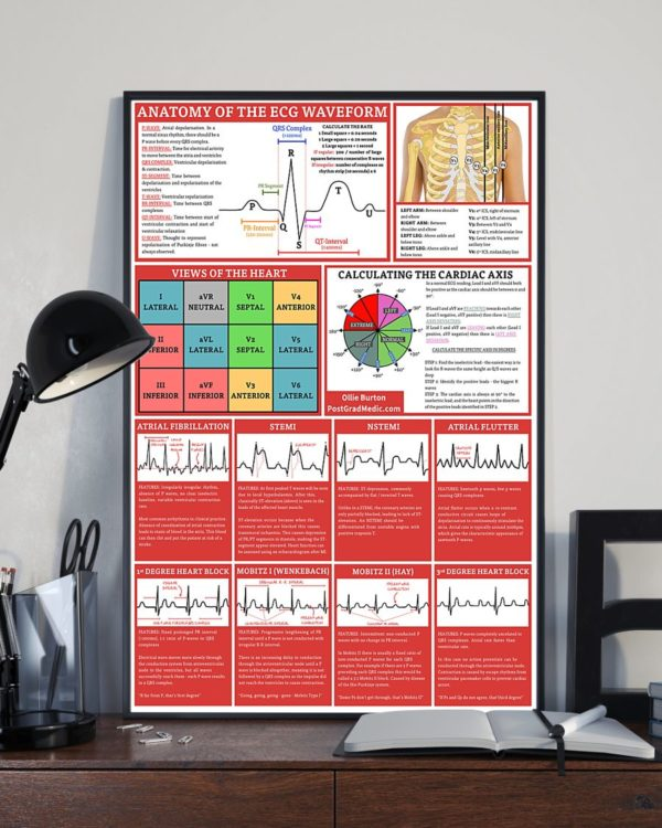 Anatomy Of The ECG Waveform Cardiologist Poster, Canvas