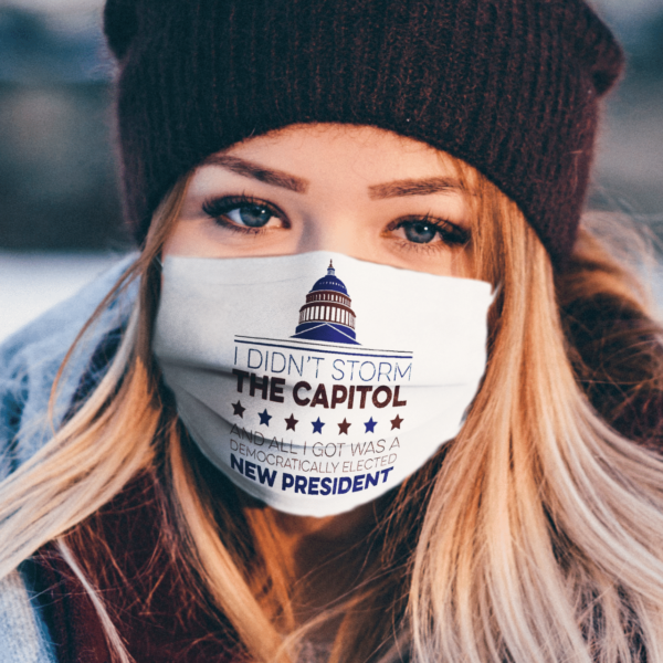 I Didnt Storm The Capitol face mask