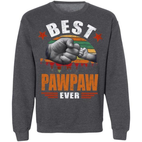 Best Pawpaw Ever Vintage Shirt