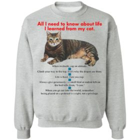 All I Need To Know About Life I Learned From My Cat Shirt, Hoodie